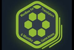 6 Month Wordbee for Translators