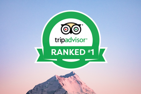 How 4 Hotels became and stayed Number one on TripAdvisor