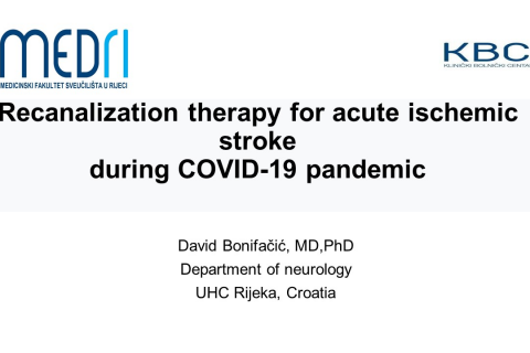 Recanalization therapy for acute ischemic stroke during COVID-19 pandemic - D. Bonifacic (A04)