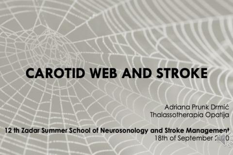 Carotid web and stroke - A. Prunk Drmic (A09)
