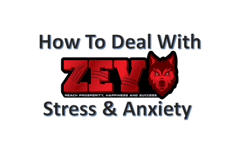 Your Mindset, Stress & Anxiety FREE TRAINING (ZevStress)