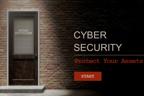 Cyber Security: Protect Your Assets (CYBER001)